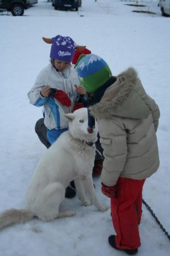 Djeca i pas